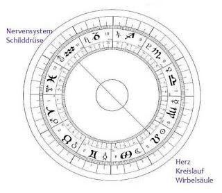 An der Achse Löwe - Wassermann können wir die Interaktion der beiden Tierkreiszeichen erkennen.