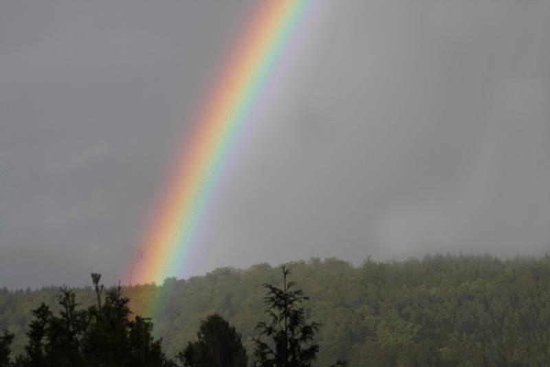 Das Versprechen des Regenbogens